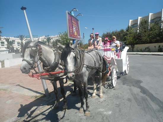 Hotel Abou Sofiane : Horse and cart Big Fat Gypsy Style