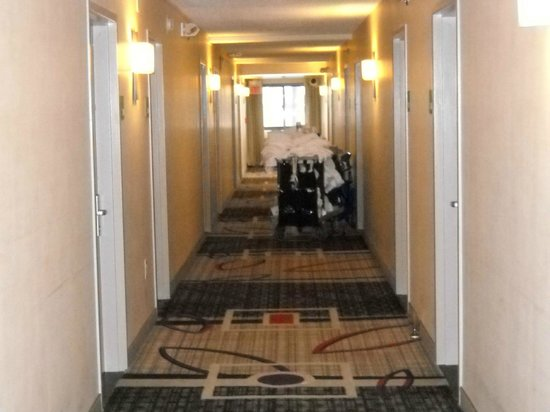 Holiday Inn Newark Airport : 2nd floor corridor