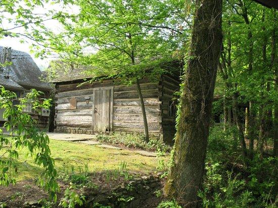 Historic Ogle Log Cabin : Lots of shots of the Cabin