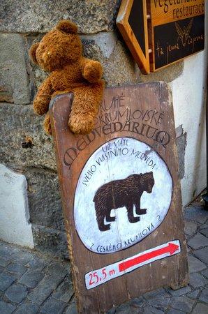 Historic Center of Cesky Krumlov : Bear Museum