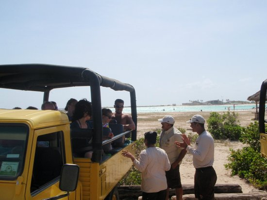 De Palm Tours: At Baby Beach