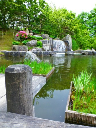 Japanese Garden: Upper pond and water fall