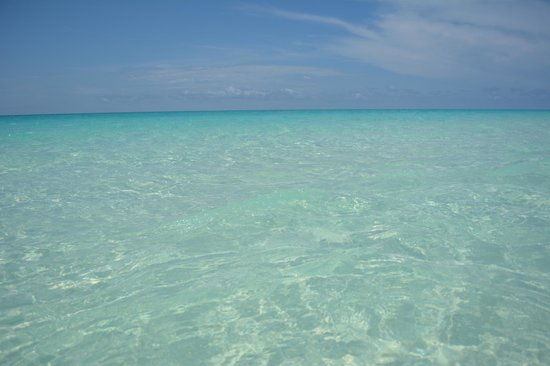 Pigeon Cay Beach Club: Yes, that's what the water looks like