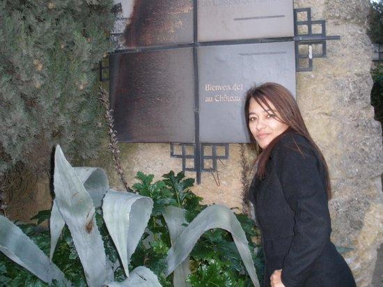Castelo de Palmela: *-*