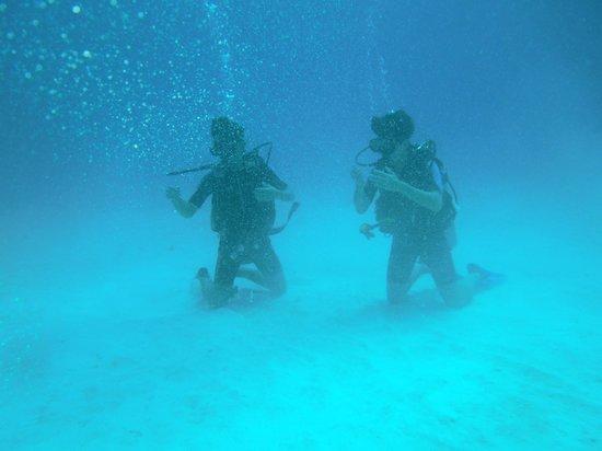 Gypsea Divers : Buceadores en el fondo