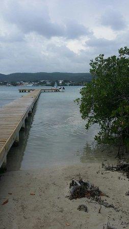 Gilligan's Island : Muy bonita vista !