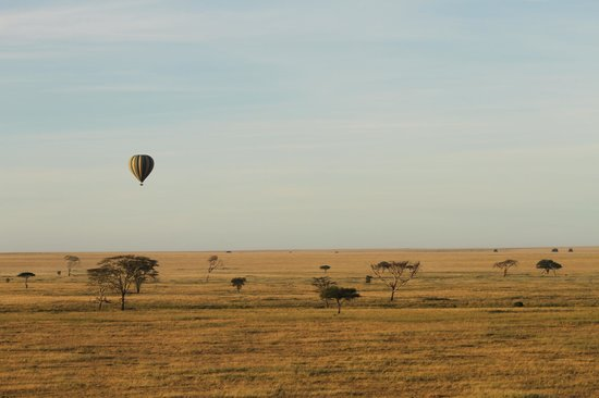 Safaris en globo sobre el Serengeti: The view
