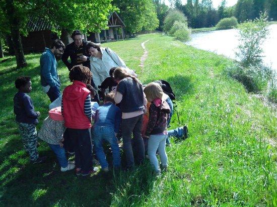 Camping Huttopia Rillé : Promenade au bord du lac devant la cabane