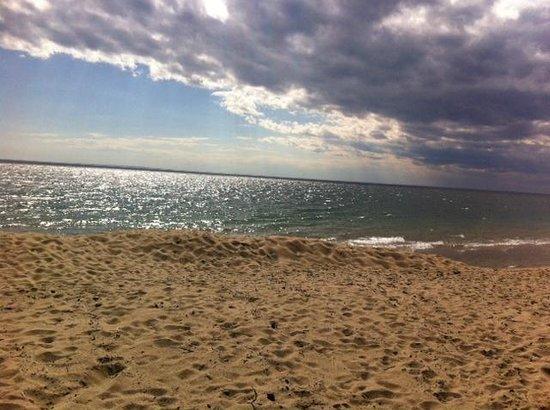 Herring Cove Beach: Spring at Herring Cove Bch