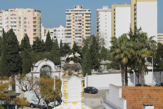 Best Western Hotel Dom Bernardo: Storks on roof of chuch near hotel