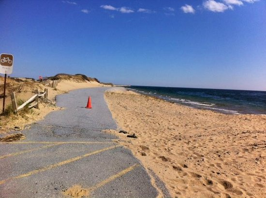 The old bike trail picture of herring cove beach for Cove cape cod