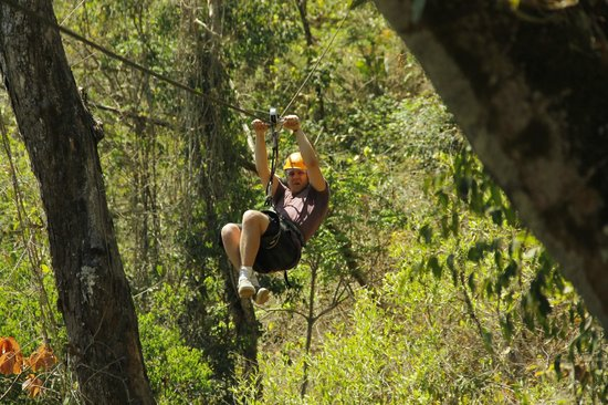 Canopy River : flying through the trees