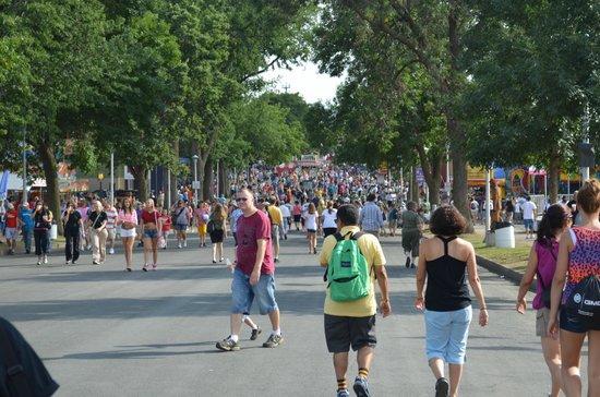 Minnesota State Fair : Beautiful Friday Afternoon