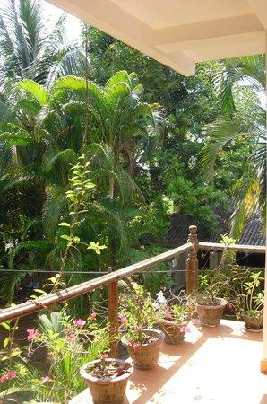 Palm Garden Guest House : terrasse de la chambre à l'étage