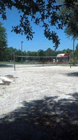 Yogi Bear's Jellystone Park: Beach volleyball