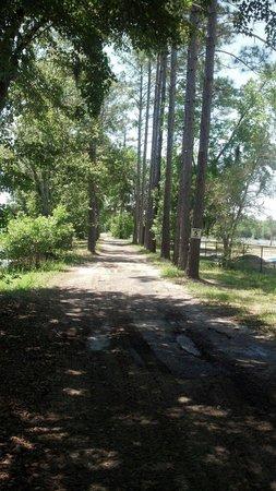 Yogi Bear's Jellystone Park: Atv and golfcart trails