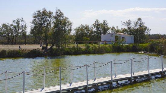 Mas de la Fouque: une des cabanes de l'hotel au bord de l'eau