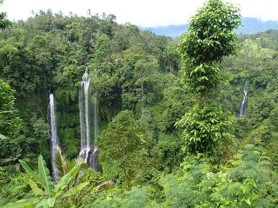 Sekumpul Waterfalls: view from above