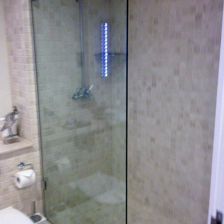South Sands Hotel: Optimist Room - Walk in shower