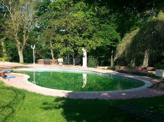 Chateau Lavail : piscine non entretenue
