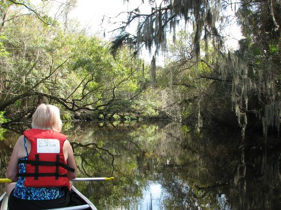 Canoe Outpost - Little Manatee River : A peaceful afternoon