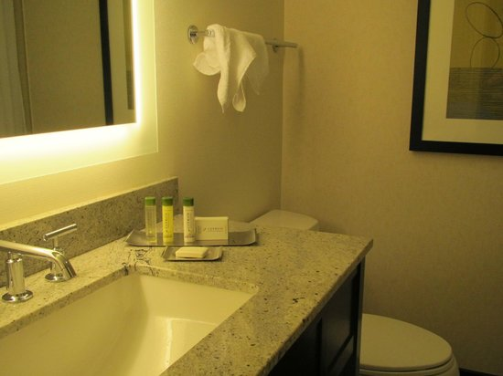 DoubleTree by Hilton - Washington DC - Crystal City : King suite bathroom