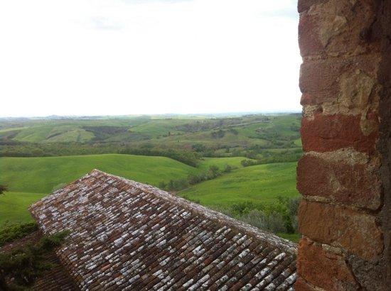 Agriturismo Sant'Anna in Camprena: Vista dalla camera