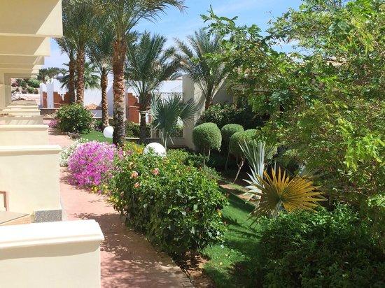 Xperience Sea Breeze Resort: Garden area in front of Block 17