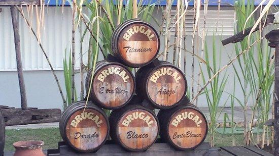 Brugal Rum Center : Barrels of Rum