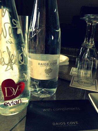 Daios Cove Luxury Resort & Villas: Water lovers!!