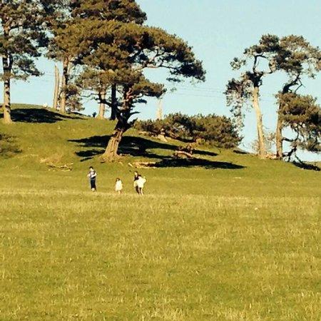 Borthwick View: Beautiful countryside on the doorstep.