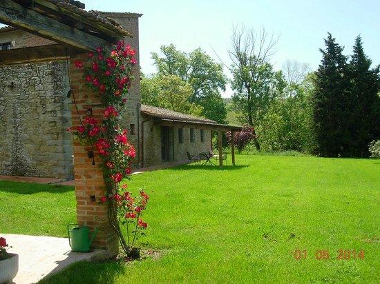Agriturismo La Sosta di Annibale : Veranda appartamento Oleandri