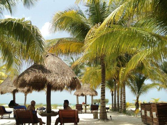 Villas HM Paraiso del Mar: Vista en área de la playa
