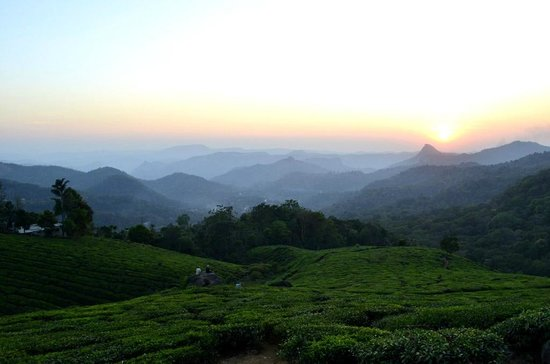 Tea & Sunset - One day attraction from Shravanam Greens