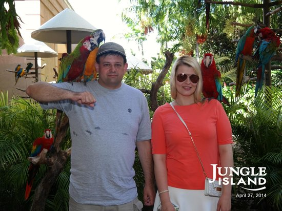 Jungle Island: Фотография на входе в парк