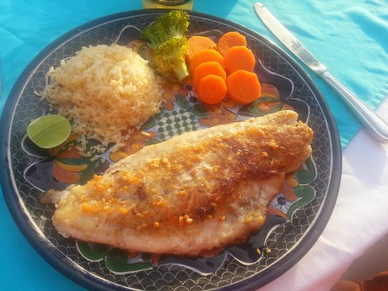 Casa Cuitlateca: one of my fav-red snapper with garlic