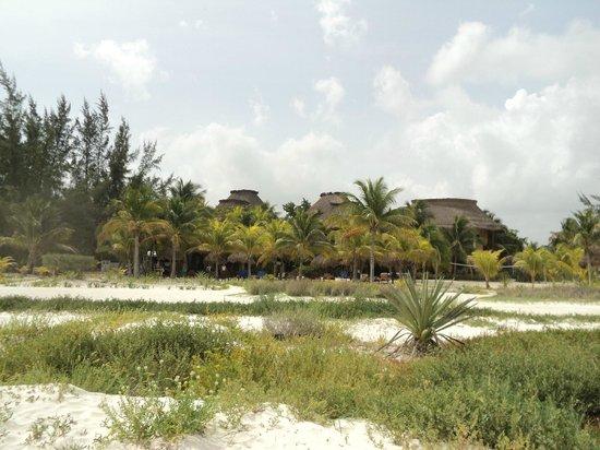 Villas HM Paraiso del Mar: Vista del hotel desde la playa