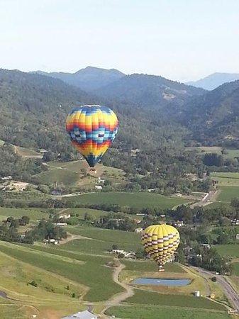 Napa Valley Aloft Balloon Rides: north view of napa valley