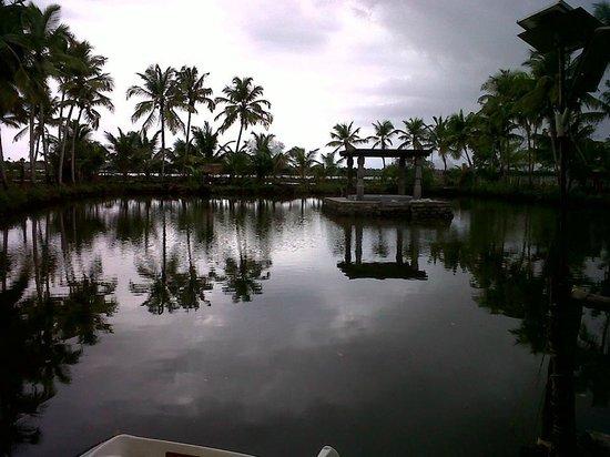 Shravanam Greens: Cloudy evening...