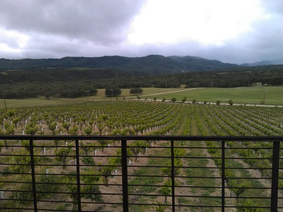 Christopher Joyce Vineyard and Inn: Another view from our deck