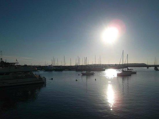 Hafen von Punta del Este: Porto no final de tarde!