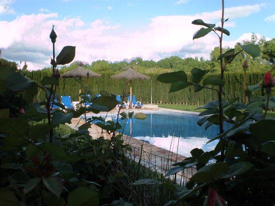 Finca Retama Farmstead: The pool Finca Retama