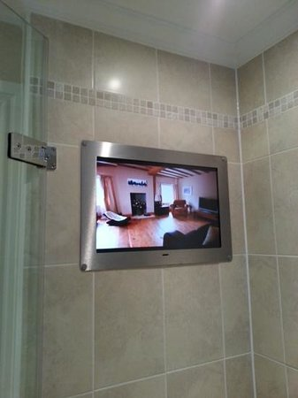 The Royal Horseguards: tv in the shower!