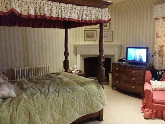 Hever Castle & Gardens: Daffodil room