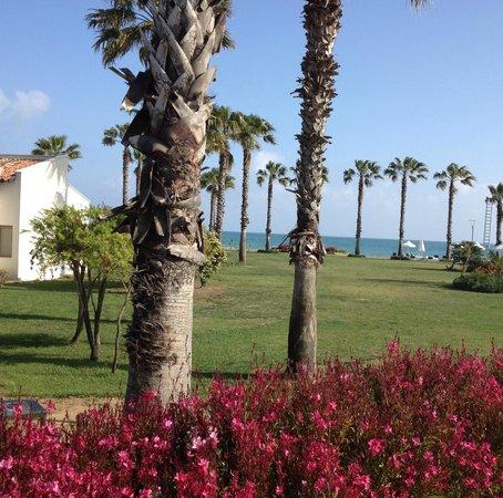 SENTIDO Zeynep Resort : Extérieurs
