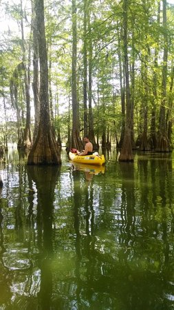 Bayou Teche Experience : Want to go back!!