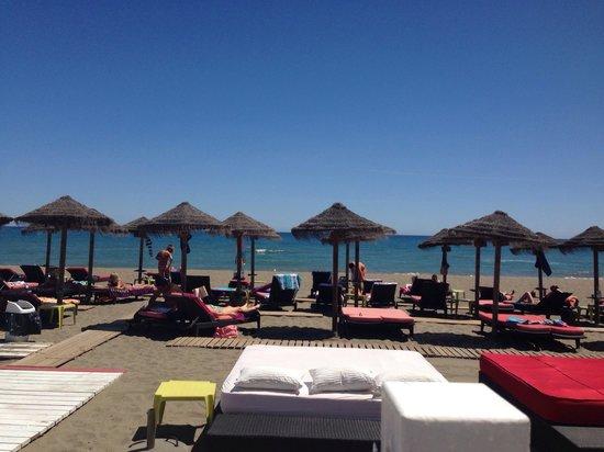 Bikini Beach Lounge Bar and Restaurant: Beach view