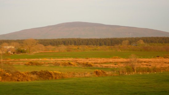 Maghernahar House B&B: View from triple room