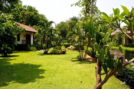 Xanadu  2008: Le jardin