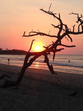 Langosta Beach Club : Sonnenuntergang